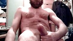 Bearded Squirt