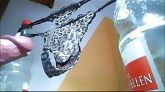 Cum in Thong String von User Sperma used panty dirty