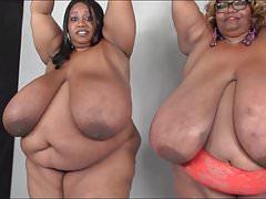 The best big boobs
