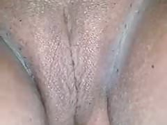 Sri Lankan whife pusy