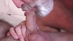 Gay bear porno xhamster