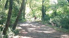 aurelia schoolgirl lost in forest