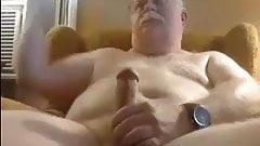 Dad Bear Donny Cums