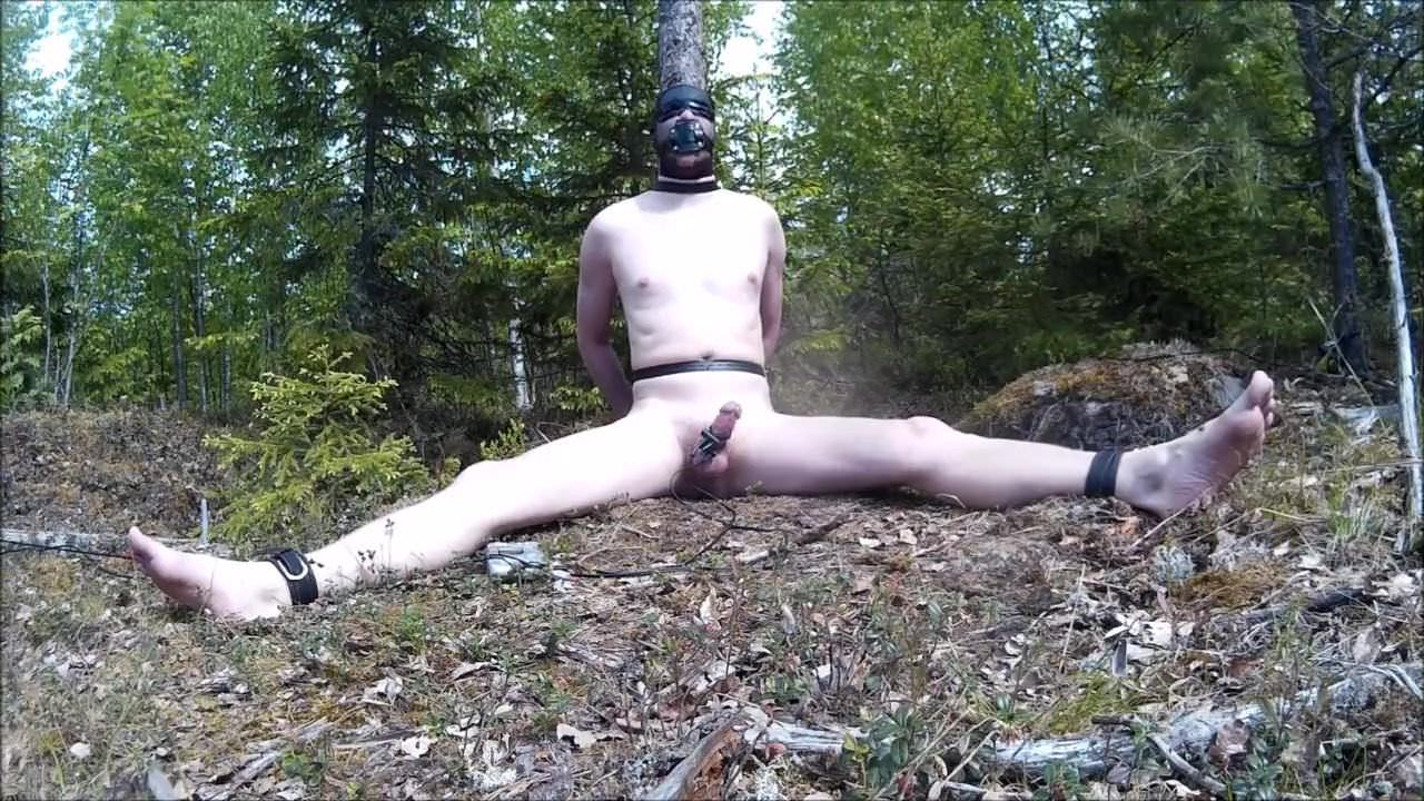 Gay Sex in the Woods xHamster