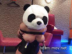 Lovebotz on panda