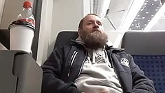 bearded bear cum in train