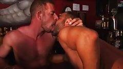 Muscle bears in a bar