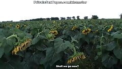 Real passion of teenage couple in the field of sunflowers