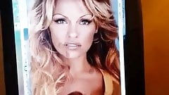Pamela anderson free sex video clips