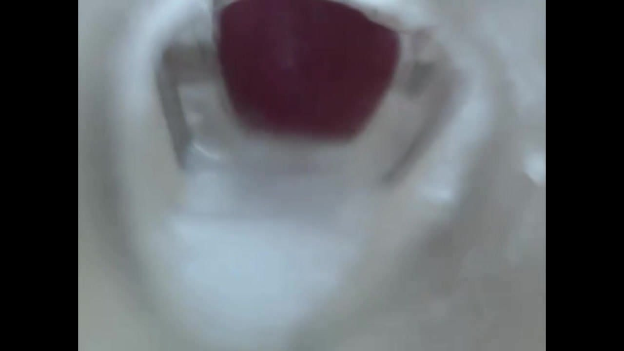 Internal fleshlight