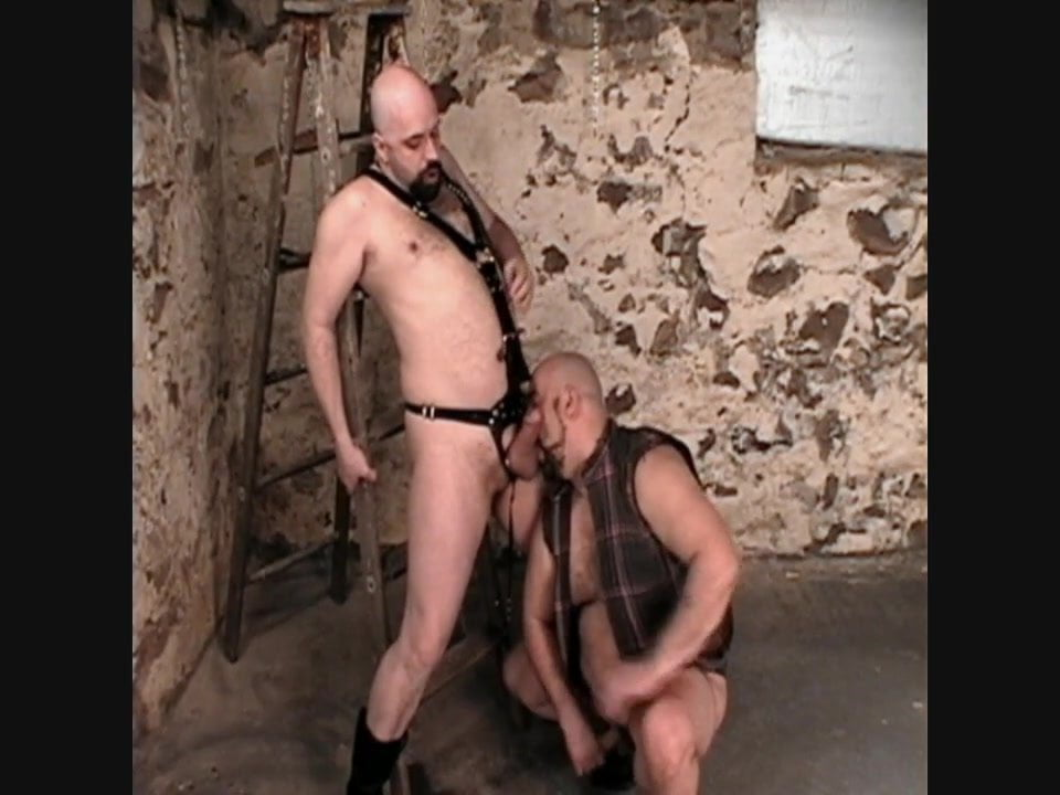 Morgan will get it sizzling & exhausting from his grasp Mac of BearForest