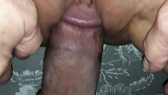 cock and pussy