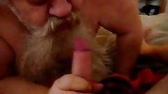 not dad bear sucking