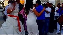 Bride's Aunt has Sexy Vpl Ass