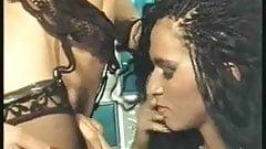 Ebony Ayes, Cicciolina, Rocco Sifreddi Busty Belle 2