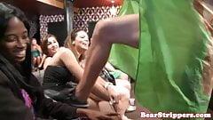 Girls gone wild cocksucking stripper