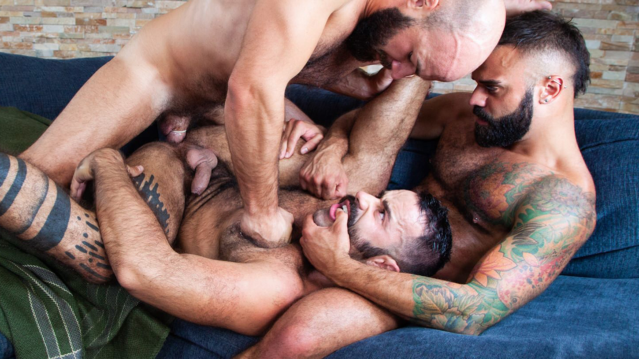The Gay Beards in pictures Show all Comments Share your