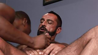Bearded Hunk gets His Tool Blown by a Balck Hunk Gay.mp4