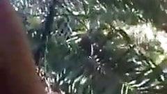 Sri Lankan Young Couple Jungle fuck