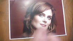 Tribute - Emily Deschanel