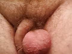 Big balls dick tucked in behind balls bounce play