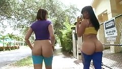 Follow these two PAWG in Spandex