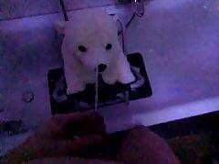 ice bear plush piss slowmotion 120fps