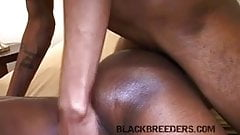 Tight Hole Bends Cock