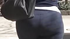 Sturdy Ass