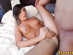 Tattooed tgirl cocksucking black dick in room