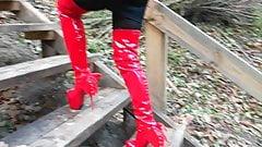 Lady L  walking in forest.