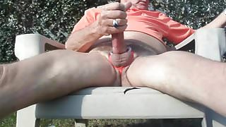 Summertime Jack in Back Yard