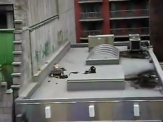 Rooftop Fucking