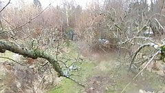 high above in a tree in windy and rainy weather