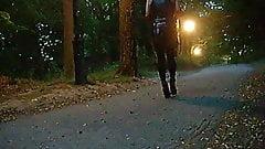 Slottsskogen, night