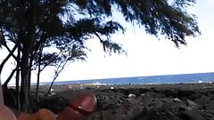 Having fun in the hawaiian sun