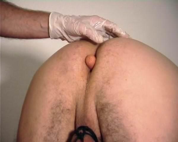 Dr peeemeee panadue anal session
