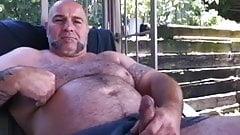 Bear shows his cock