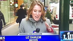 Liz Dahlem Fox News girl so hot