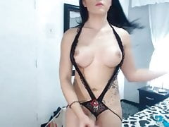 Beautiful Shemale Chick Stripteases and Fucks Herself Good