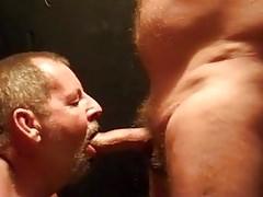 amateur bear sucks 4 cum