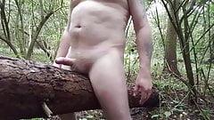 Public wank on a falen tree