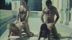 Vive L'Ecole (1980)