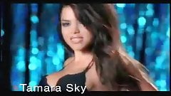 DJ Tamara Sky - Lick it