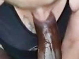 Ugly white girl sucks a beautiful black dick