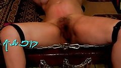 Hard pussy whip