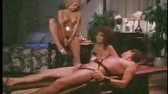 Ten Little Maidens (Ginger Lynn, Janey Robbins)