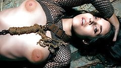 Chained Up - Emily J