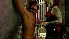 Slave dude bound, gagged, blin