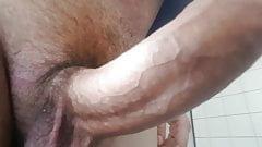 Would you suck my huge dick ?